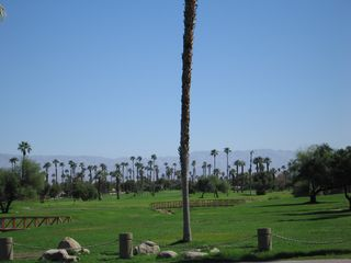 Palm Springs condo photo - 33 acres featuring 5 lakes, 7 bridges and lush tree lined fairways