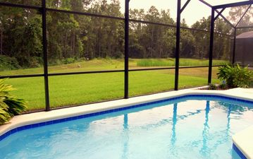 Heated pool overlooking the forest and lake
