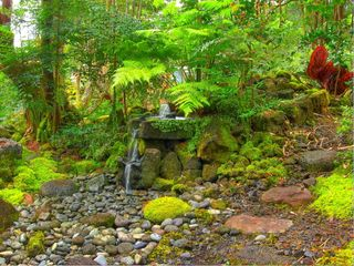 Hilo bungalow photo - Stroll or meditate in the peaceful gardens and learn from nature