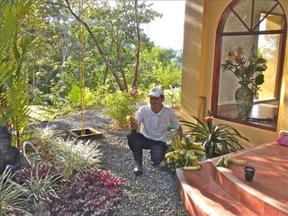 Uvita villa photo - Marvin, our wonderful gardener. The latest harvest of bananas from the garden.