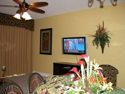 "42"" Plasma TV  Custom drapes"