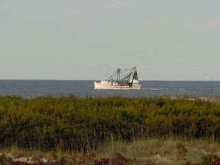 Harbor Island house photo - Shrimp boats in the front yard!