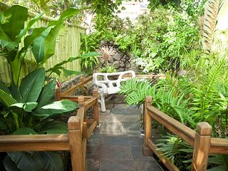 Ocho Rios villa photo - view for bedroom2 - coi fish pond with waterfall