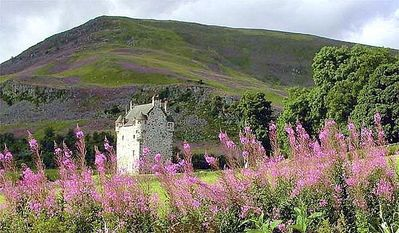 Glenisla castle rental