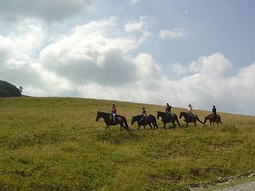 Horseback riding is available from Spring to Fall at Cataloochee Ranch