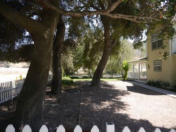 Los Alamos chateau / country house rental - Entry walkway under the 200 year old oaks...