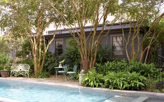 New Orleans studio photo - Pool facing master suite.