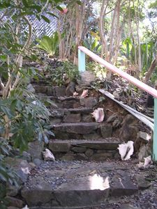Steps to the Cottage
