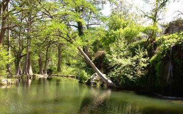 Local Activities: Krause Springs (photo), wineries, canopy tour, boating, & more
