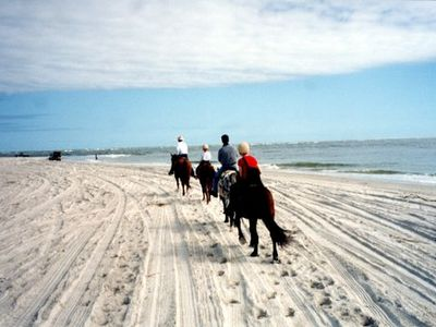 Horseback riding available on beach.