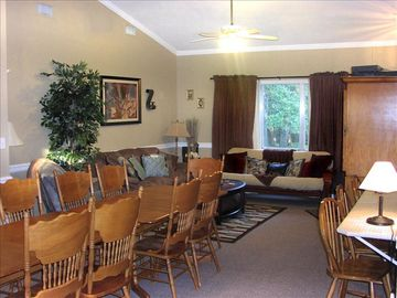 New Braunfels house rental - Living room / dining room with futon for extra sleeping