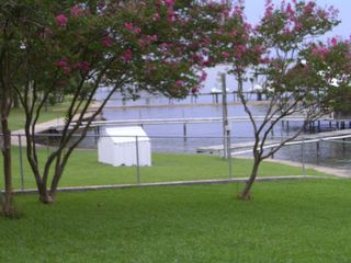 Cedar Creek Lake house photo - Lovely myrtle crepe trees line the back yard
