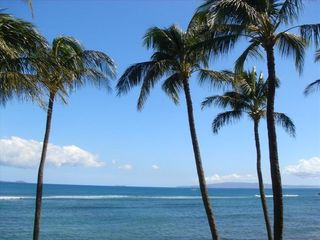 Maalaea condo photo - Amazing tropical view from the lanai