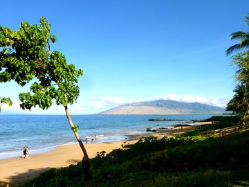 Our Kamaole 3 beach-just steps away.