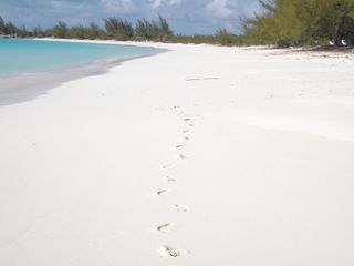 The only footsteps are yours - Cat Island house vacation rental photo