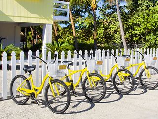 Islamorada house photo - Taxi Bikes