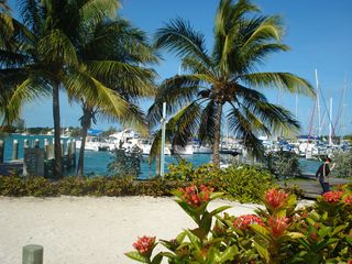 Treasure Cay villa photo - .