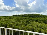 Ocean Pointe Suites With Beautiful Views Of Mangroves And Ocean!