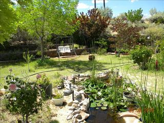 Albuquerque house photo - Backyard view of pond in foreground