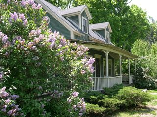 Warren farmhouse photo - Spring Lilacs