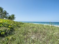 How to become Castaway in this Treasure Coast Paradise