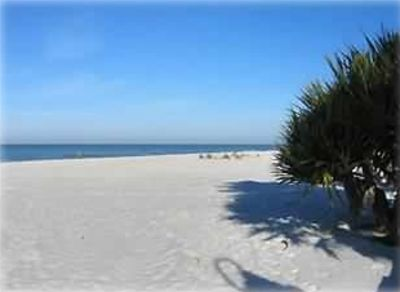 Beautiful white sand beach with lots of room to walk & play!