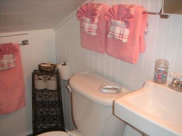 Children's upstairs bathroom w/clawfoot tub. Designed with little ones in mind.