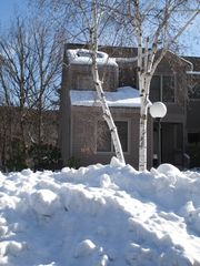 Shawnee townhome photo - Winter time on Shawnee Mountain