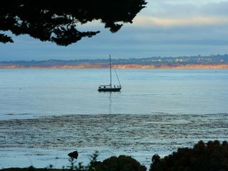 Pacific Grove house photo - Your afternoon cruise??