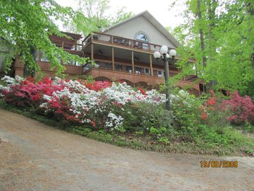Wilson Lake house rental - Pic of house from drive near lake when the azaleas are in bloom 4/15