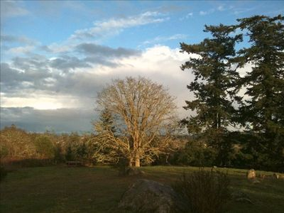 Friday Harbor studio rental - Wintertime View from the Hot Tub across the meadow