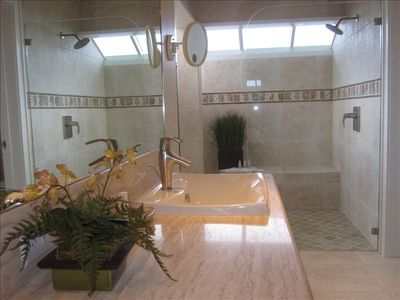 ...Luxurious Spacious Shower