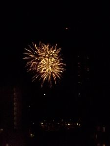 Watch Firework Show Every Friday Night at 7:45 pm Right From Our Balcony!!