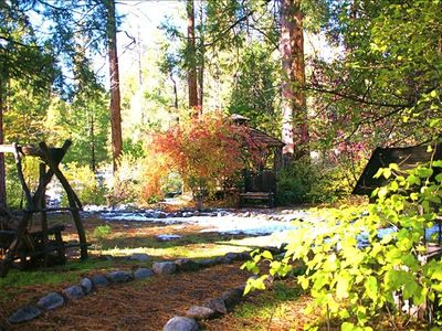 Backyard with light sprinkling of snow on brilliant fall leaves! Taken in Nov.
