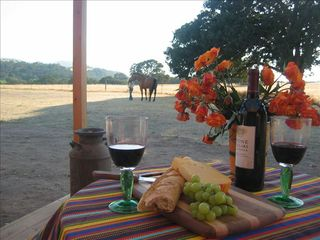 Paso Robles barn photo - Views outside The Western Guest Cottage...perfect for drinking wine!
