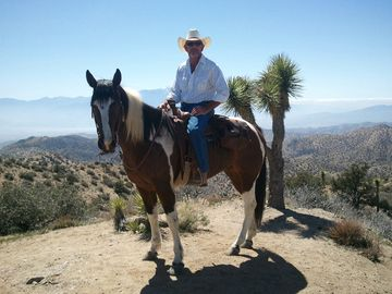 Yucca Valley bungalow rental - Trail Ride with Don Mathein to Eureka Peak, Joshua Tree National Park