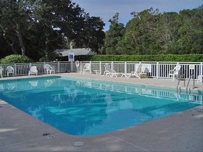 Outdoor pool, surrounded by maritime oaks.