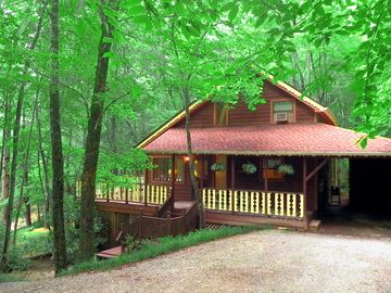 Dillard cabin rental - Wrap-Around Deck, Cozy Hammock, Wild Flowers, Chipmunks, Deer, Turkeys.....