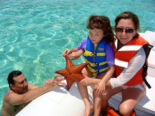 Great Exuma villa photo - Abundant Sea life