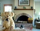 VRBO Bear relaxing in the beautiful living room