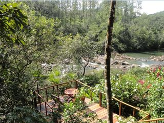 Mountain Pine Ridge villa photo - River deck