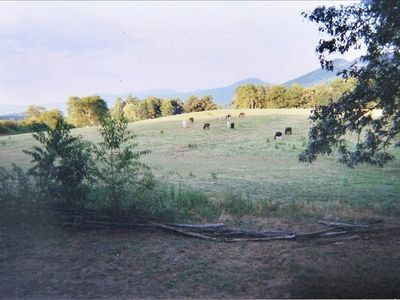 View from the front porch of Horse Haven