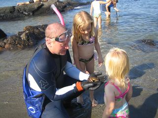 York Beach house photo - Kids Love Discovering Native Sea Creatures