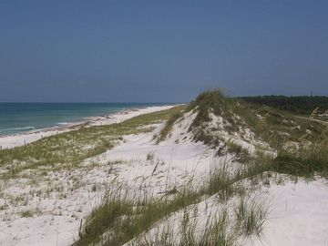 Cape San Blas CONDO Rental Picture