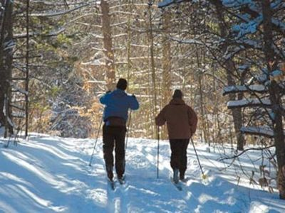 Gladwin house rental - Cross Country Ski Headquarters-Houghton Lake