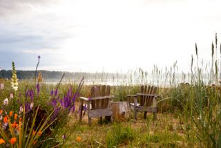 Chairs amongst the beach grasses and flowers