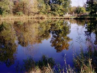 New Paltz cottage photo - Pond