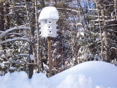 Purple Martin house at the top of the driveway at the Log Home