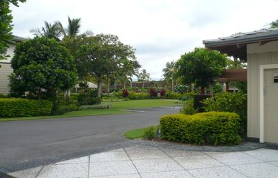 Enjoy the Beautifully Landscaped Grounds of the Palm Villas
