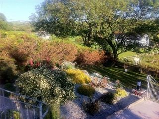 County Mayo cottage photo - View from the terrace down into the lower garden